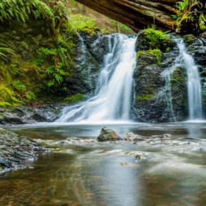 Familienauszeit Neuseeland - Wasserfall