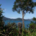 Familienauszeit Neuseeland - Marlborough Sounds1