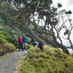 Familienauszeit Neuseeland - Familienspaziergang